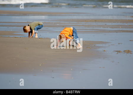 Two caucasian boys kids children kid child digging holes in sand beach sea shore shallow water upside down summer - Stock Photo