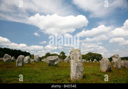 July 2008 - Megalithic stones alignments de Kremario Carnac Morbihan Brittany France - Stock Photo