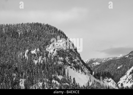 A black and white image of a mountain near Snoqualmie, Washington shrouded in winter snow and pine trees. - Stock Photo