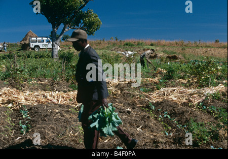 NGO CARE's project for agriculture redevelopment in war-ravaged Angola. - Stock Photo