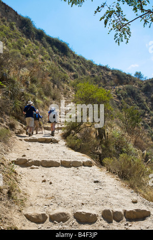 Looking up along the Inca Trail or Camino Inka in the Andes of Peru on the first day one of the four day trek - Stock Photo