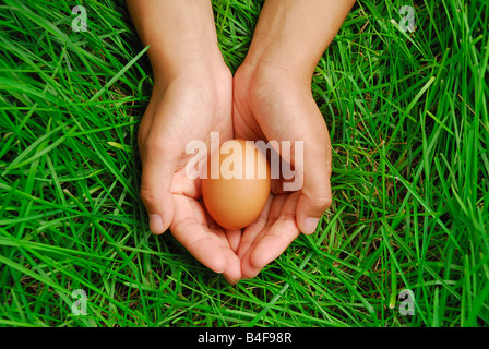 Eggs of a bird in hand with green grass background - Stock Photo