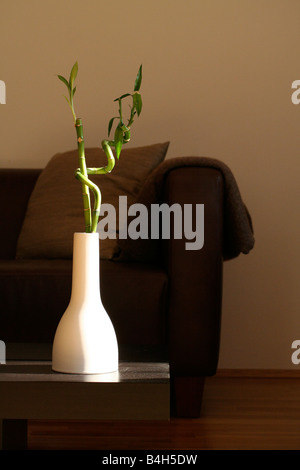 Close-up of vase on table in living room - Stock Photo