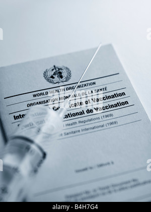 Close-up of syringe on vaccination card - Stock Photo