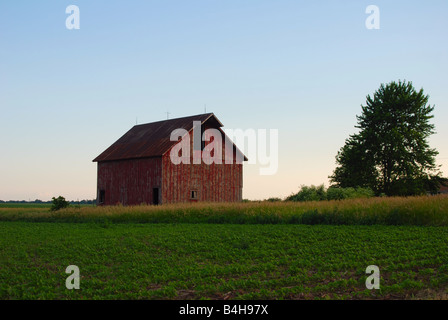 a one-hundred and twenty year old barn on a mid-western american farm - Stock Photo