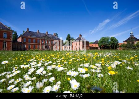 Daisy field in front of castle, Bothmer Castle, Kluetz, Mecklenburg-Western Pomerania, Germany - Stock Photo