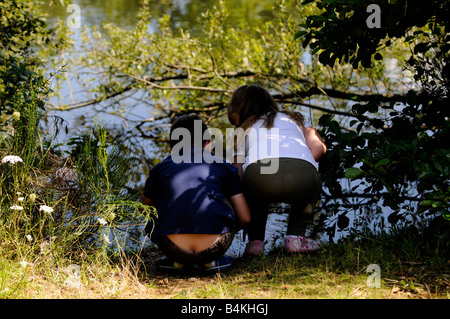 Brother and sister peer into a pond at Belhus Park 15 08 2008 Credit Sportinpictures Garry Bowden - Stock Photo