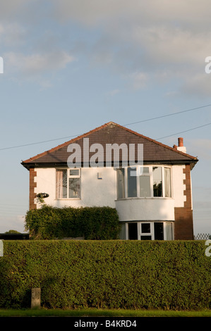 Tall privet hedge in front of detached suburban house Preston Lancashire England UK - Stock Photo