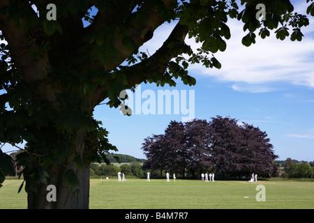 Traditional English Village Cricket - Stock Photo