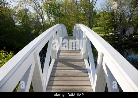 Wooden foot bridge over a pond Somesville ME - Stock Photo