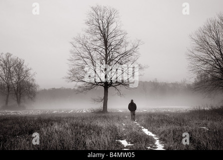 Dreamy image of a shadowy man walking in the mist near a large tree - Stock Photo