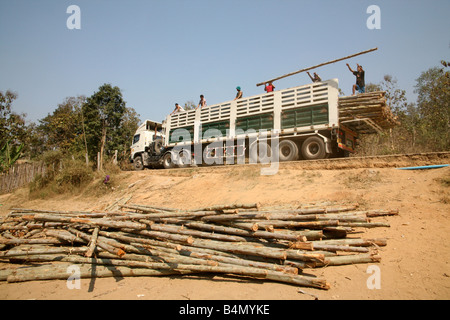 Workers unload logs from a truck to build more homes Around 130 000 Burmese refugees have settled in Thailand due - Stock Photo
