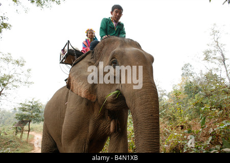 Members of the Longneck group riding an elephant near their village Approximately 300 Burmese refugees in Thailand - Stock Photo