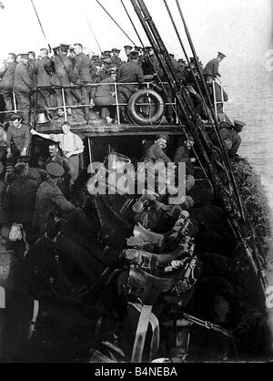 British cavalry and horses on board ship on their way to France August 1914 The British Expedtionary Force were - Stock Photo