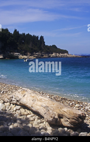 Driftwood strewn across Monodendri Beach in the Greek, Ionian island of Paxos - Stock Photo