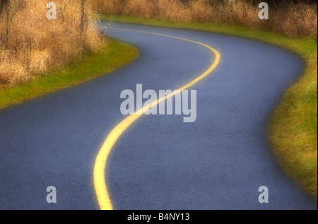 Small paved and curvy road used as a bike trail in a park - Stock Photo