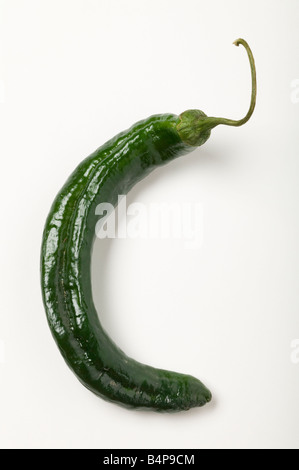 Chilaca Chili Pepper - Stock Photo