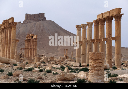 Palmyra at sunset, looking west to the Qala'at Ibn Maan, Syria. - Stock Photo
