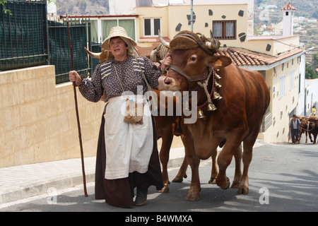 Spanish woman with bulls at fiesta del Pino in Teror on Gran Canaria in The Canary Islands - Stock Photo