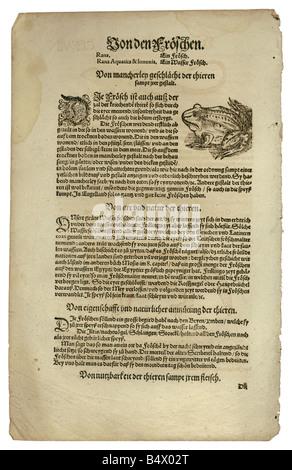 zoology / animals, textbooks, 'Historia animalium', by Conrad Gessner, Zurich, Switzerland, 1551 - 1558, edible - Stock Photo