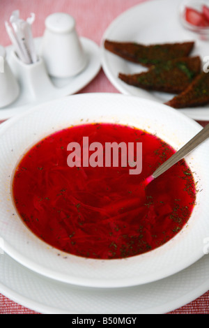 Sep 2008 - Borscht a traditional russian beetroot soup Moscow Russia - Stock Photo