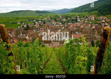 Sep 2008 - View over the village of Riquewihr and vineyards in the Wine Route area, Alsace, France. - Stock Photo