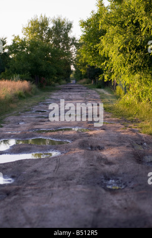 muddy country road with big puddles - Stock Photo