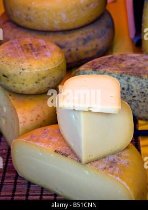 Teifi cheese on display at Abergavenny Food Festival Wales UK - Stock Photo