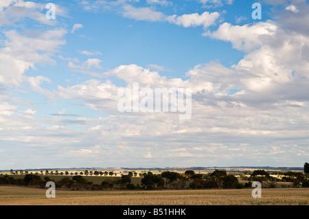 Corrigin, Western Australia Australia - Stock Photo