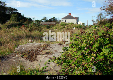 brown field site in Newton derelict ground - Stock Photo
