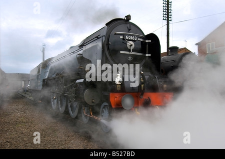 A1 Pacific 60163 Tornado is the first main line steam engine to be built in Britain in 50 years. - Stock Photo