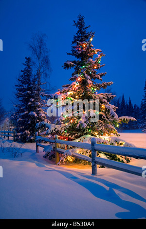 Decorated Christmas tree along snow covered fence rail night Anchorage Southcentral Alaska Winter - Stock Photo