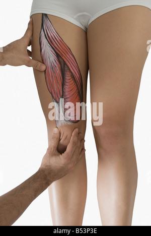 Chiropractor adjusting woman's leg - Stock Photo