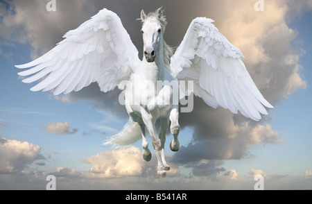 Pegasus in gallop with wings spread - Stock Photo