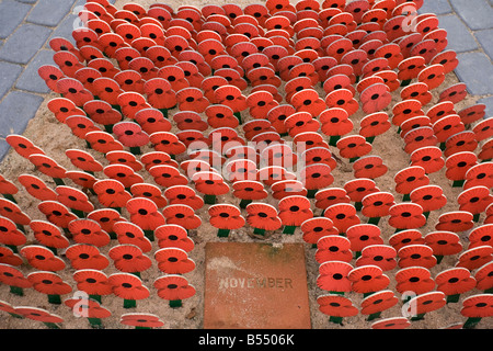Remberance day poppies and national british war memorial - Stock Photo