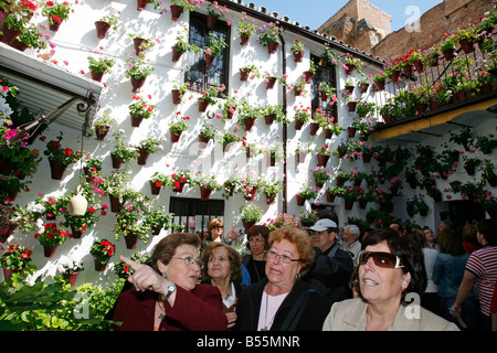 Tourists visit the festival of patios Cordoba Andalucia Spain. El Stock Photo...