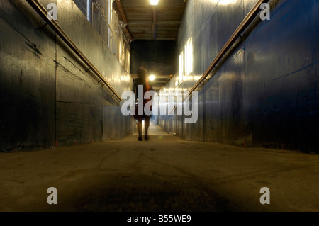 Woman walks along a pedestrian corridor in a construction site in New York Richard B Levine - Stock Photo