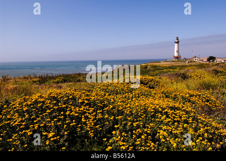 California San Francisco Wildflowers and the Pigeon Point Lighthouse on the San Mateo Coast, - Stock Photo
