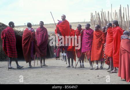 Masai warriors doing traditional jumping at their village at Ngorongoro Conservation Area, Tanzania, Africa - Stock Photo