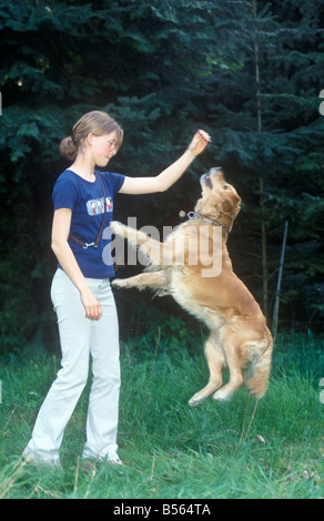 a young girl making her dog jump - Stock Photo