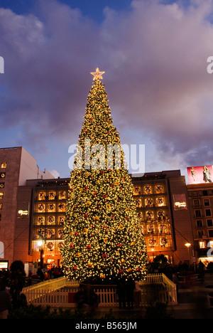 California San Francisco The large Christmas tree at Union Square Photo 32 casanf75807 Photo Lee Foster 2008 - Stock Photo