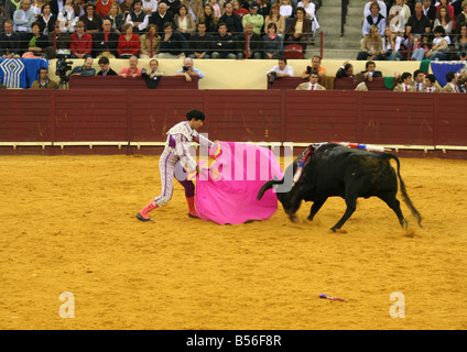 Bullfight at Praca de Touros de Campo Pequeno - Stock Photo
