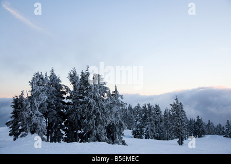 Sunset on a winter scene - Stock Photo
