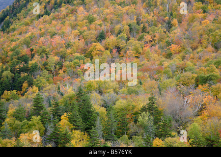 Crawford Notch State Park during the autumn months Located in the White Mountains New Hampshire USA - Stock Photo