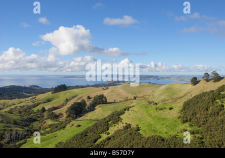 View out to sea with grassy hills in foreground Leigh Auckland North Island New Zealand - Stock Photo