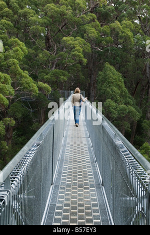A woman walks along the Valley of the Giants Tree Top Walk walkway through the Red Tingle forest, Walpole Nornalup - Stock Photo