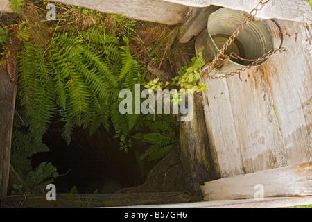 Looking into a well in Mesendorf or Meschendorf saxon villages Transylvania Romania - Stock Photo