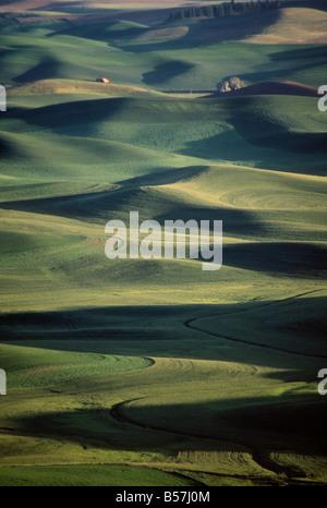 Palouse farmlands as seen from Steptoe Butte, Eastern Washington State - Stock Photo