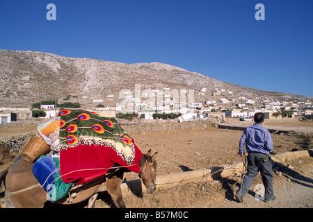 greece, dodecanese islands, karpathos, avlona, man with mule - Stock Photo