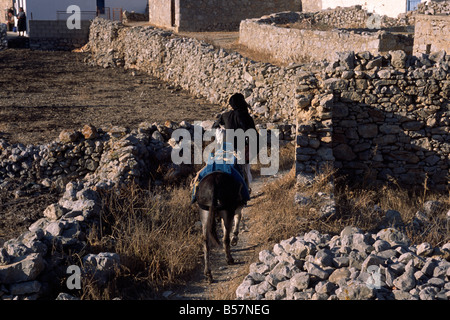 greece, dodecanese islands, karpathos, avlona, greek woman on a donkey - Stock Photo